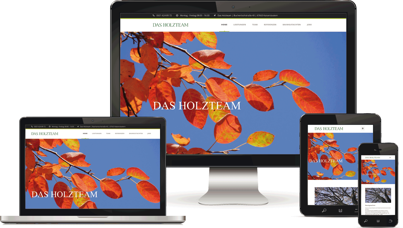 Webagentur in Kaiserslautern, Maintenance - BAQUE-Internetservice